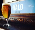 Frogbeer lance HALO